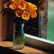Maine Windowsill Art Print