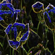 Majestic Blue Art Print