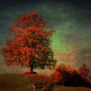 Majestic Linden Berry Tree Art Print