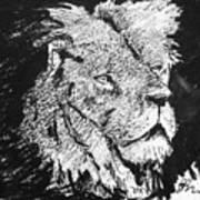 Male Lion Portrait Art Print