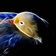 Mallard Duck Fractal Art Print