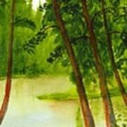 Mallard Lake Bc Art Print