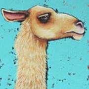 Mama Llama Art Print