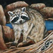 Mama Racoon Art Print