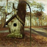 Mamaw's Birdhouse Art Print by Steven  Michael