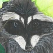 Mamma Raccoon  Art Print