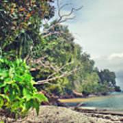 Mamutik Island Art Print