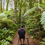 Man Relaxing In Strahan Rainforest Retreat Art Print
