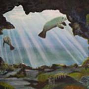 Manatee Cave Art Print