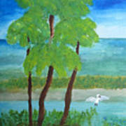 Manatee Refuge Part 1 Art Print