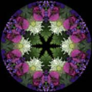Mandala 3 Art Print