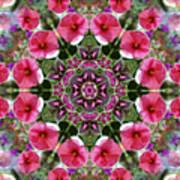 Mandala Pink Patron Art Print