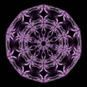 Mandala Purple And Black Art Print