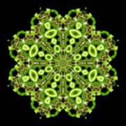 mandala - Revival-2201- 02gb Art Print