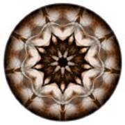 Mandala - Talisman 3701 Art Print