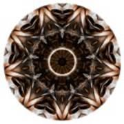 Mandala - Talisman 3705 Art Print