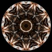 Mandala - Talisman 3706 Art Print