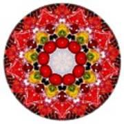 Mandala - Talisman 4010 Art Print