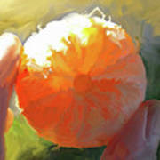 Mandarin Art Print
