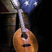 Mandolin America Art Print by Barry C Donovan