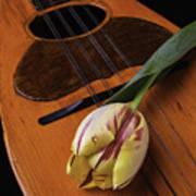 Mandolin And Tulip Art Print