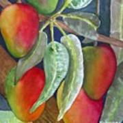 Mango One Art Print