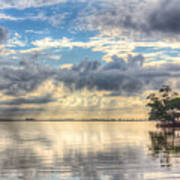 Mangrove Mirrored Dreams Art Print