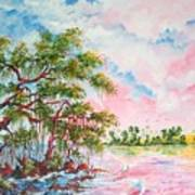 Mangroves Art Print