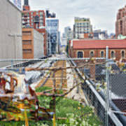 Manhattan High Line Art Print