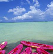 Many Pink Kayaks Art Print