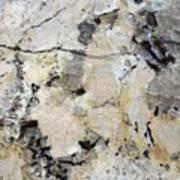 Marble Tan Black Art Print