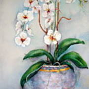March Orchids Art Print