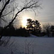 March Sunrise Behind Pines Art Print