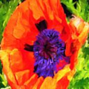 Margo's Poppy Art Print
