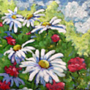 Marguerites 002 Art Print