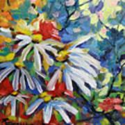 Marguerites Art Print