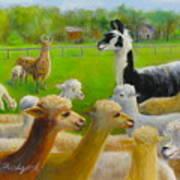 Mariah Guards The Herd Art Print