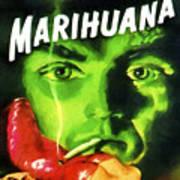 Marihuana Art Print