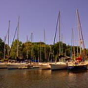 Marina At Lake Murray S C Art Print