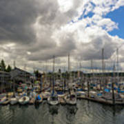 Marina In Olympia Washington Waterfront Art Print