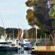 Marina Views Art Print