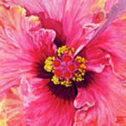 Maron's Hibiscus Art Print