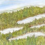 Marsh 8 Art Print