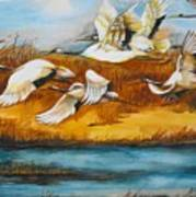 Marsh Flight Art Print