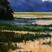 Marsh Jazz Art Print
