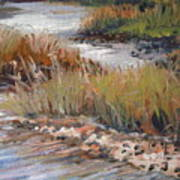 Marsh Reflections Art Print