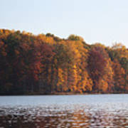 Maryland Autumns - Clopper Lake - Fall Bloom Art Print