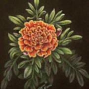 Marys Gold Art Print
