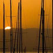 Masts At Dawn Art Print