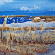 Matagorda Island Texas Art Print